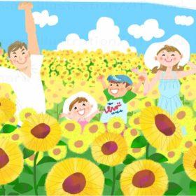 はらゆうこが描く夏のひまわり畑の家族
